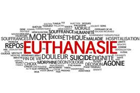 La question de l'euthanasie